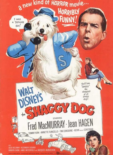 THE SHAGGY DOG FILM POSTER(1959)