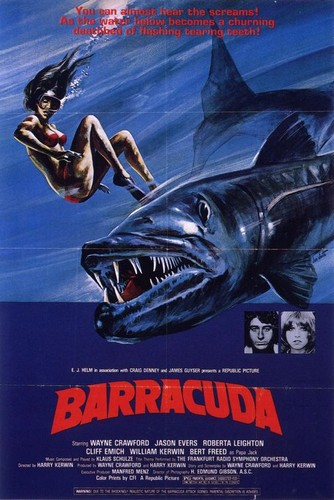 BARRACUDA 1978