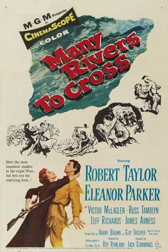 MANY RIVERS TO CROSS FILM POSTER 9