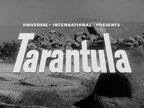 TARANTULA (1)