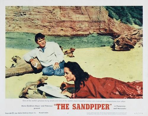THE SANDPIPER 1